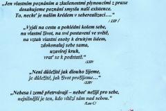 pokorny_img019
