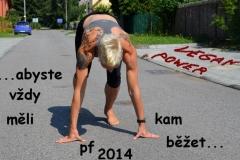 PF 2014