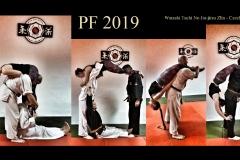 PF2019-WTNJJ
