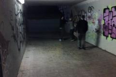 zenseb_5_2011_06